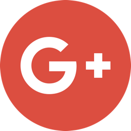 google plus icon flat icon shop download free icons for